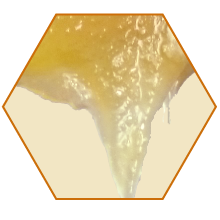 raw honey unfiltered